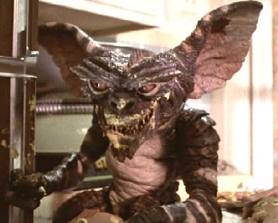 Image result for feed gremlins after midnight